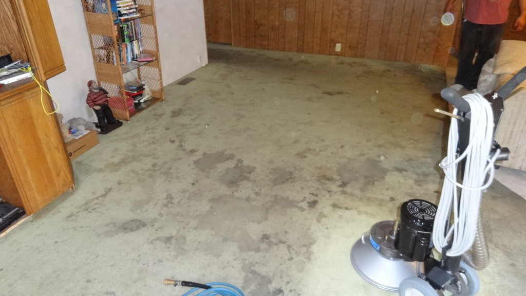 Carpet Cleaning Service - Before